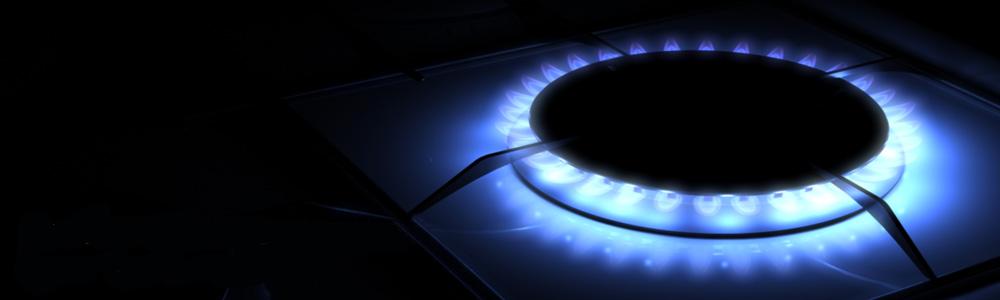 Descrizione della componente QVD – fatture gas